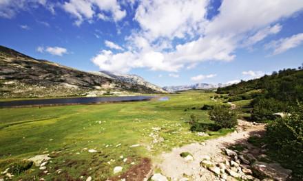 Corse – Informations sur les 180km du Gr20