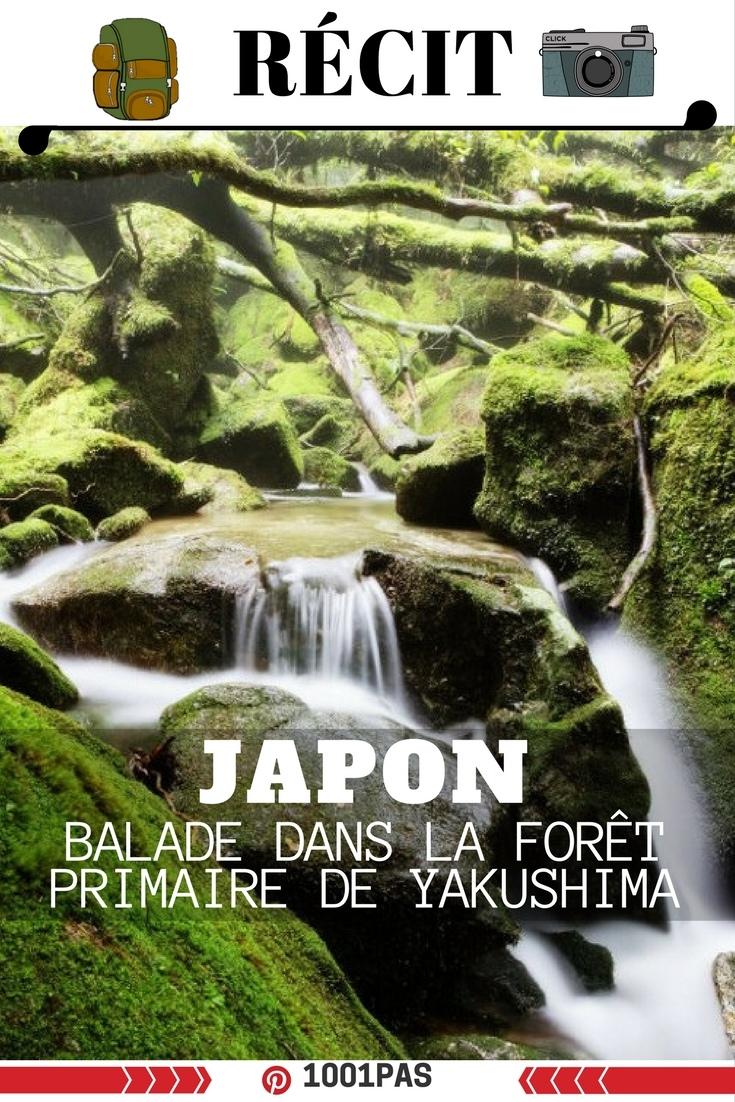 bal;ade dans foret fukushima
