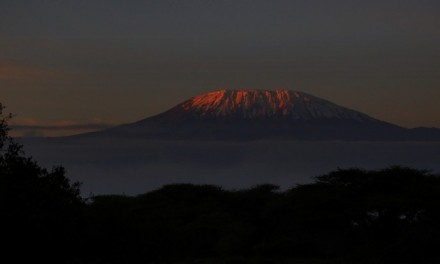 Tanzanie – ascension du Kilimandjaro [récit – 1]