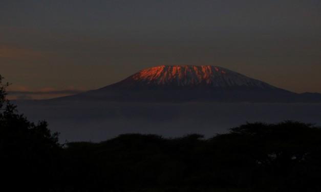 Tanzanie – ascension du Kilimandjaro [récit – 1]