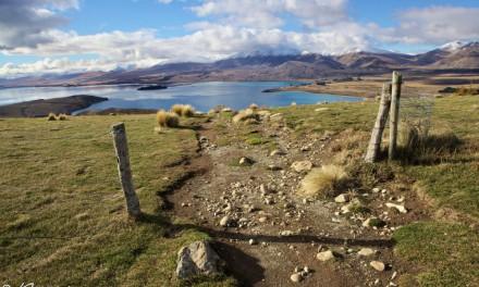 Lac Tekapo : un dangereux paradis pour randonneurs en Nouvelle-Zélande