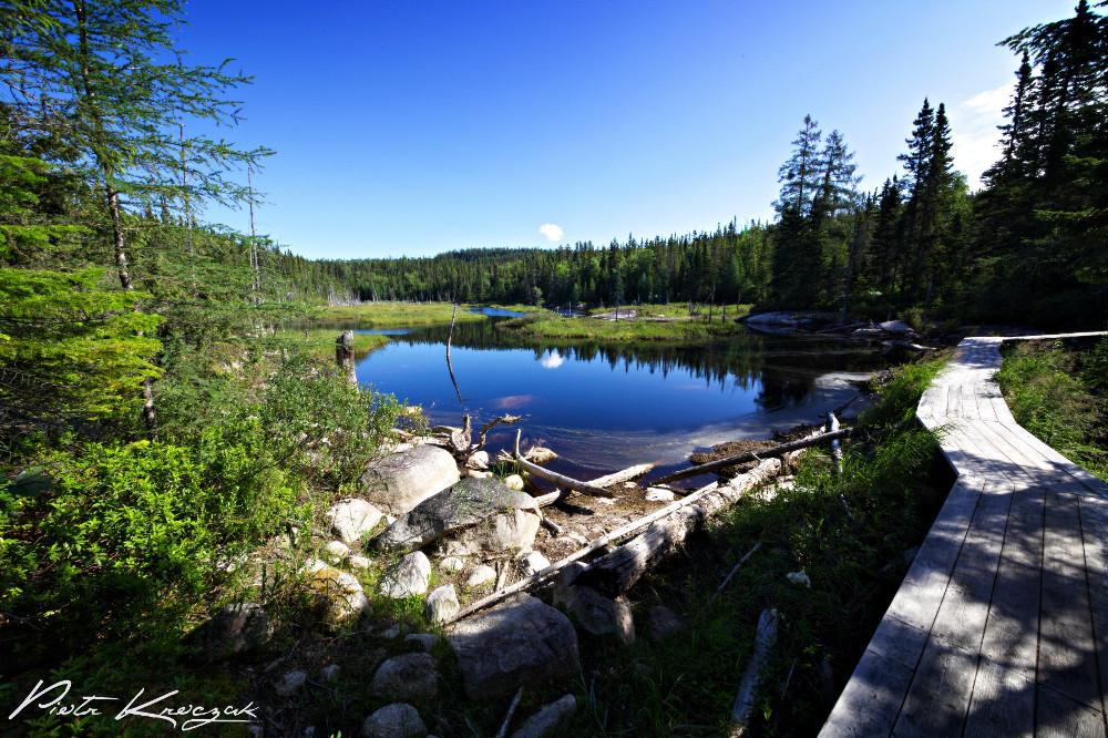 sentier fjord (16)
