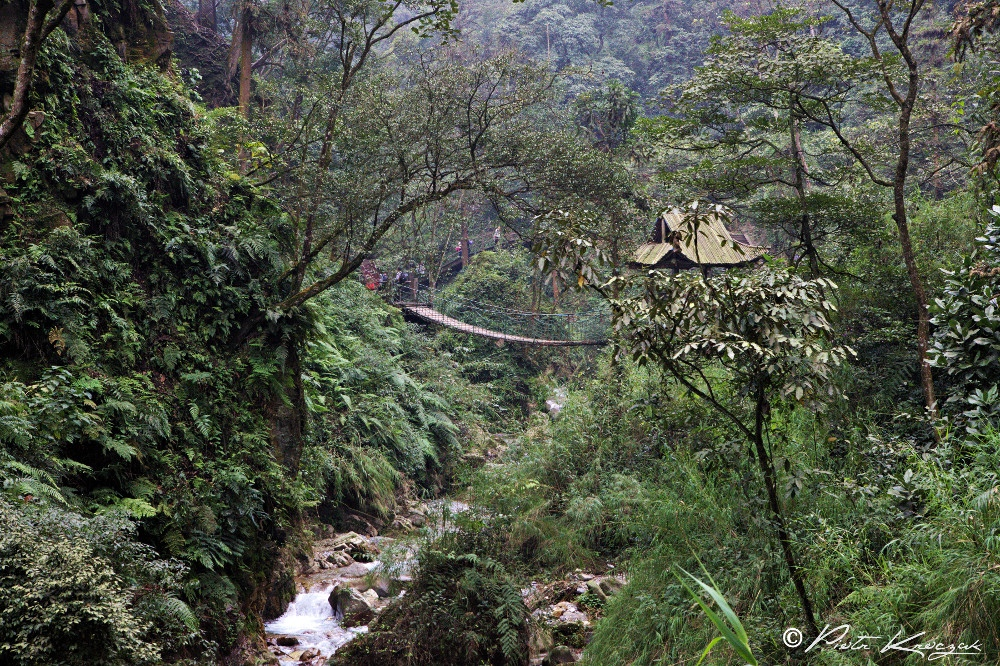 temple mont emei shan (2)