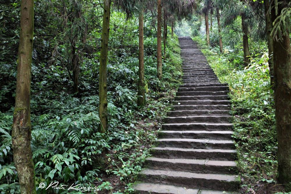 temple mont emei shan (23)