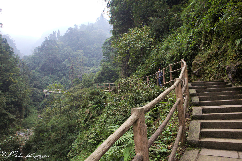 temple mont emei shan (3)