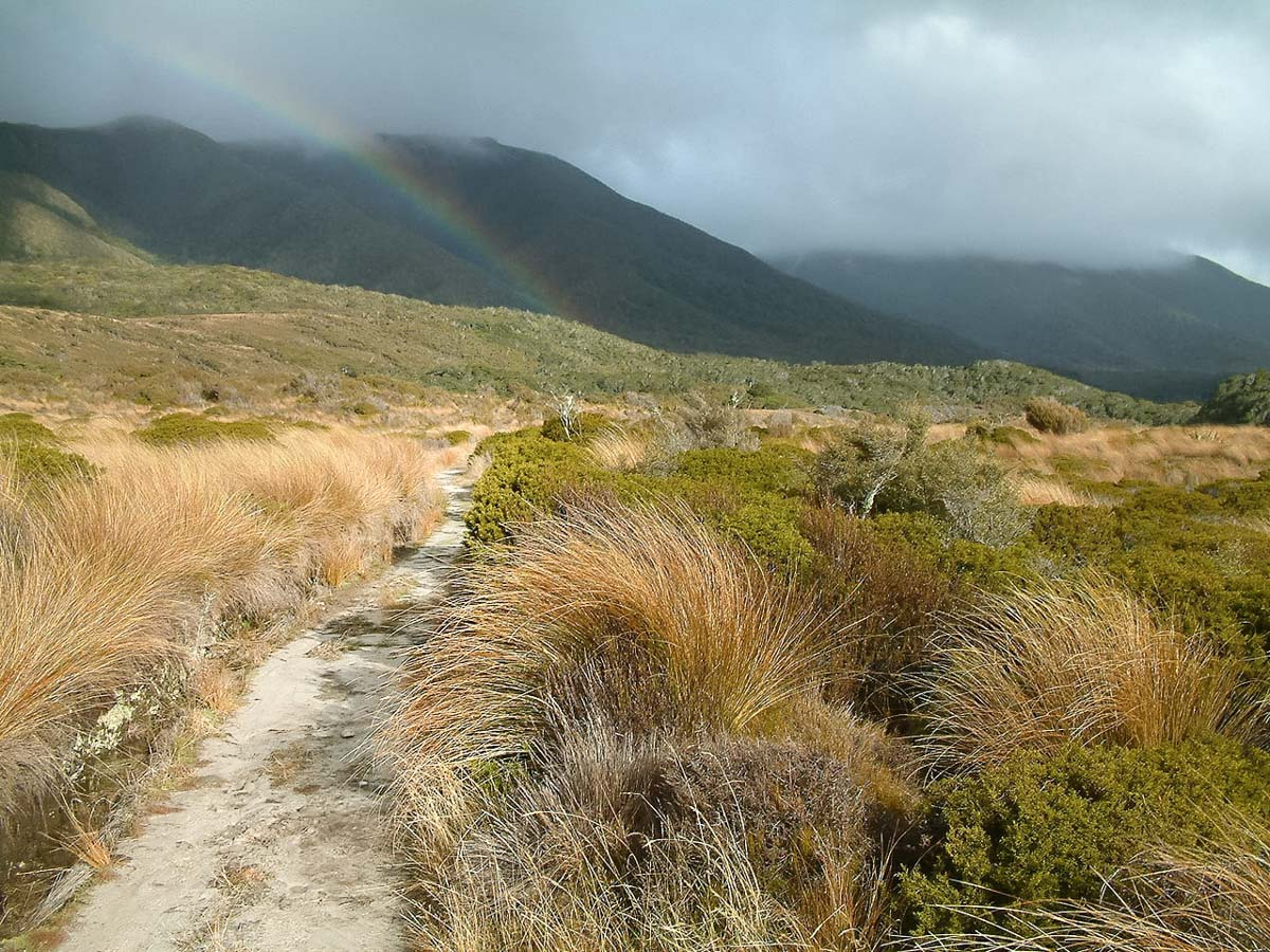 randonnée Heathy trak nouvelle zélande